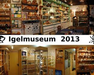 Hedgehog Museum