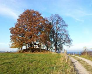 Thuringian climatic trail