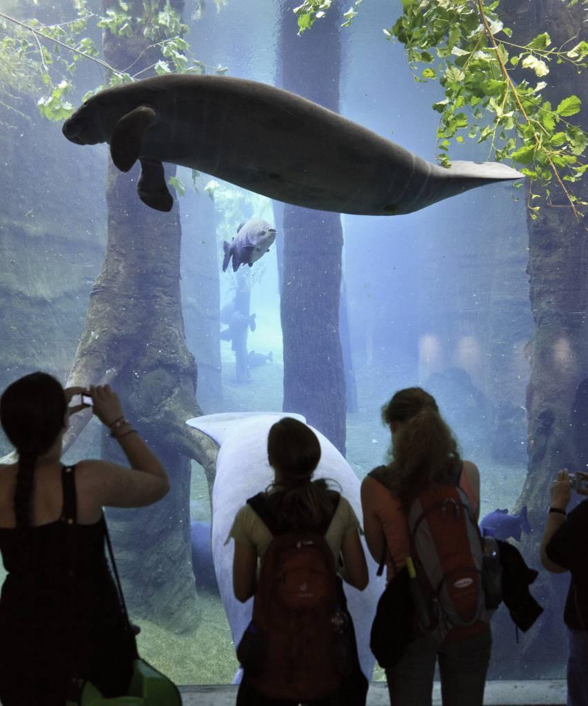 Nürnberg Zoo Preise