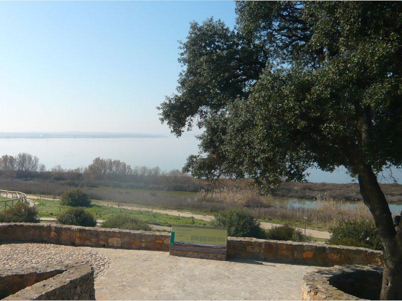 Local destination fuente de piedra lagoon in fuente de - Fuentes de piedra ...